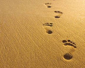 My Solo Footprints